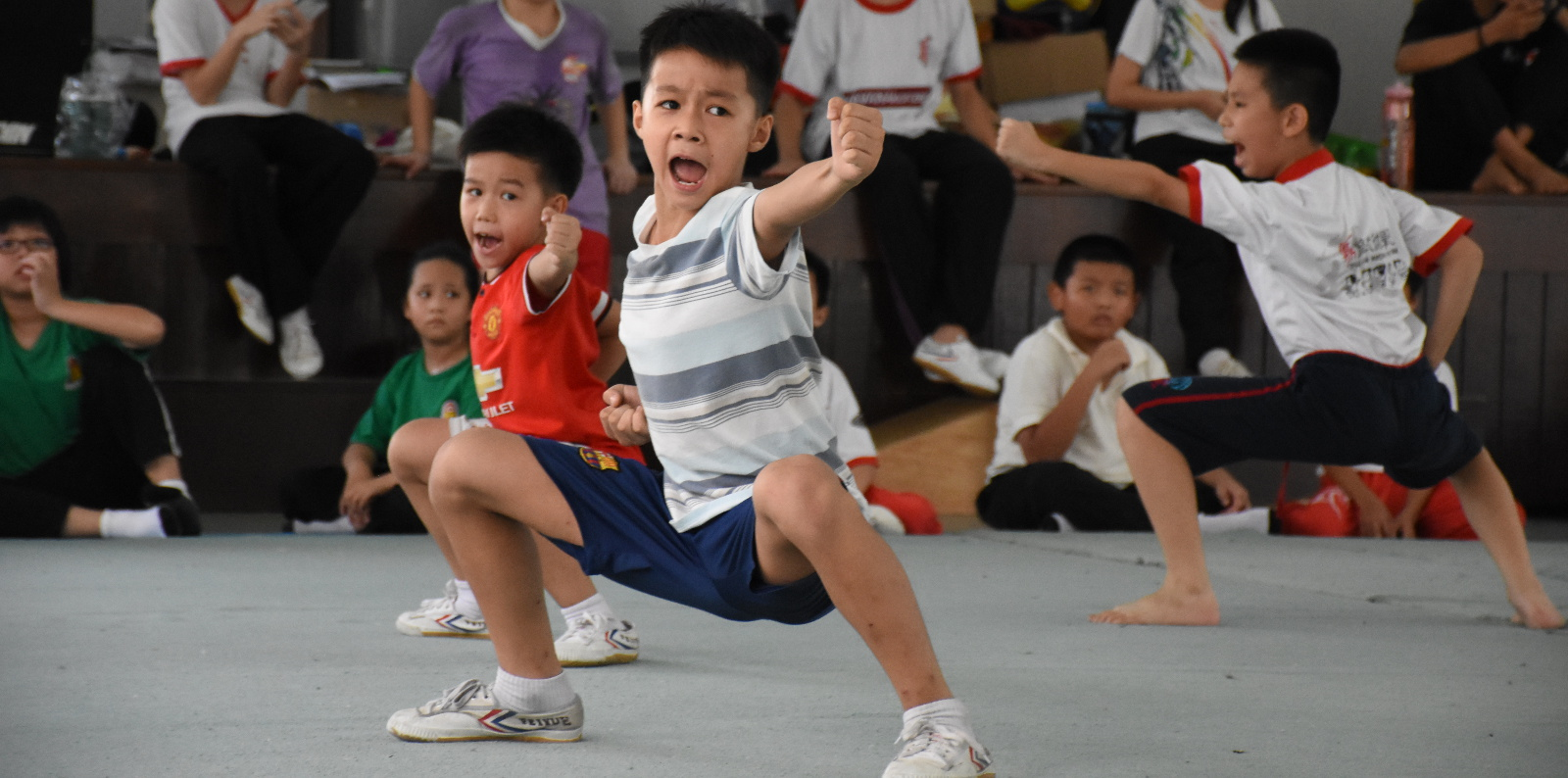Ding Feng Wushu Classes